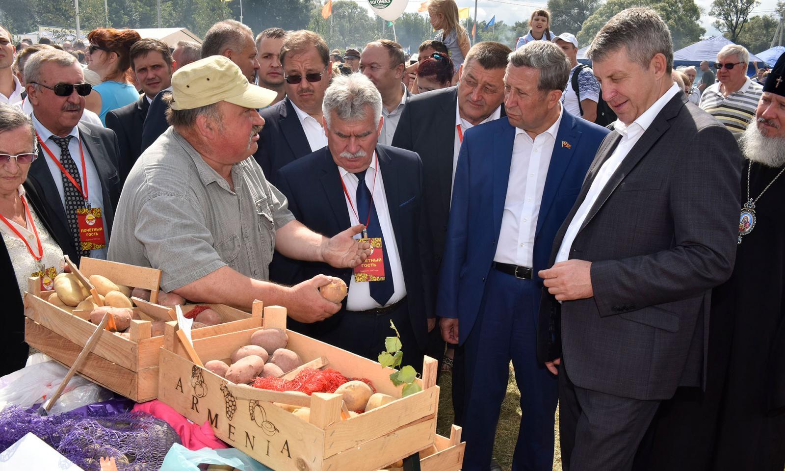 Брянская область по производству картофеля занимает первое место в России
