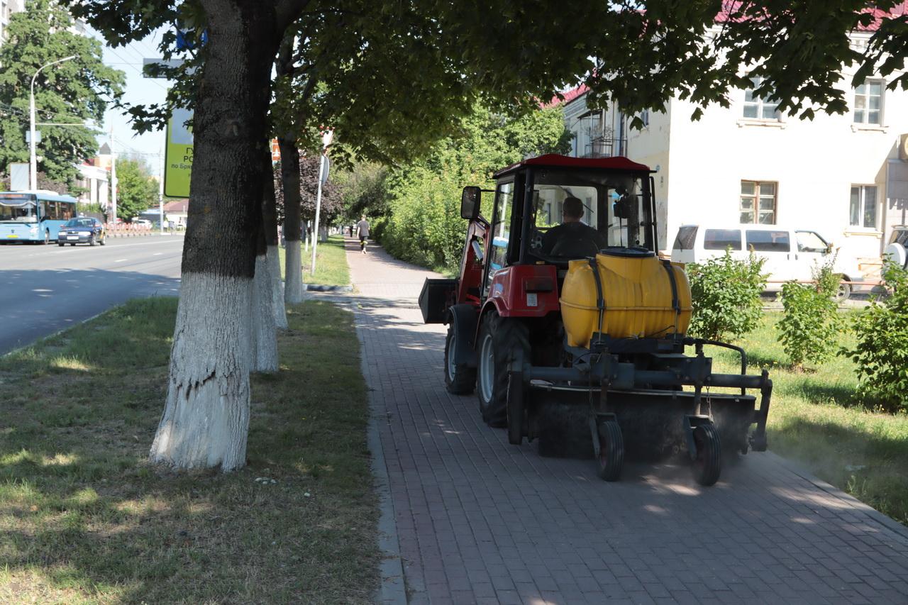 В четырех районах Брянска за июль покосили траву на 50 гектарах и собрали 10 тысяч тонн песка