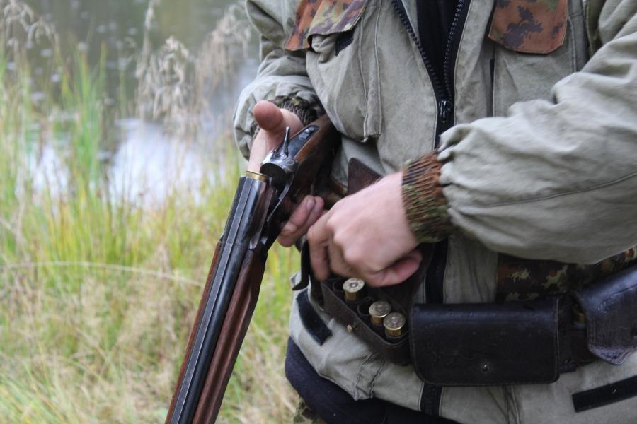 Житель Карачева застрелил в заповеднике двух диких кабанов и попал под суд