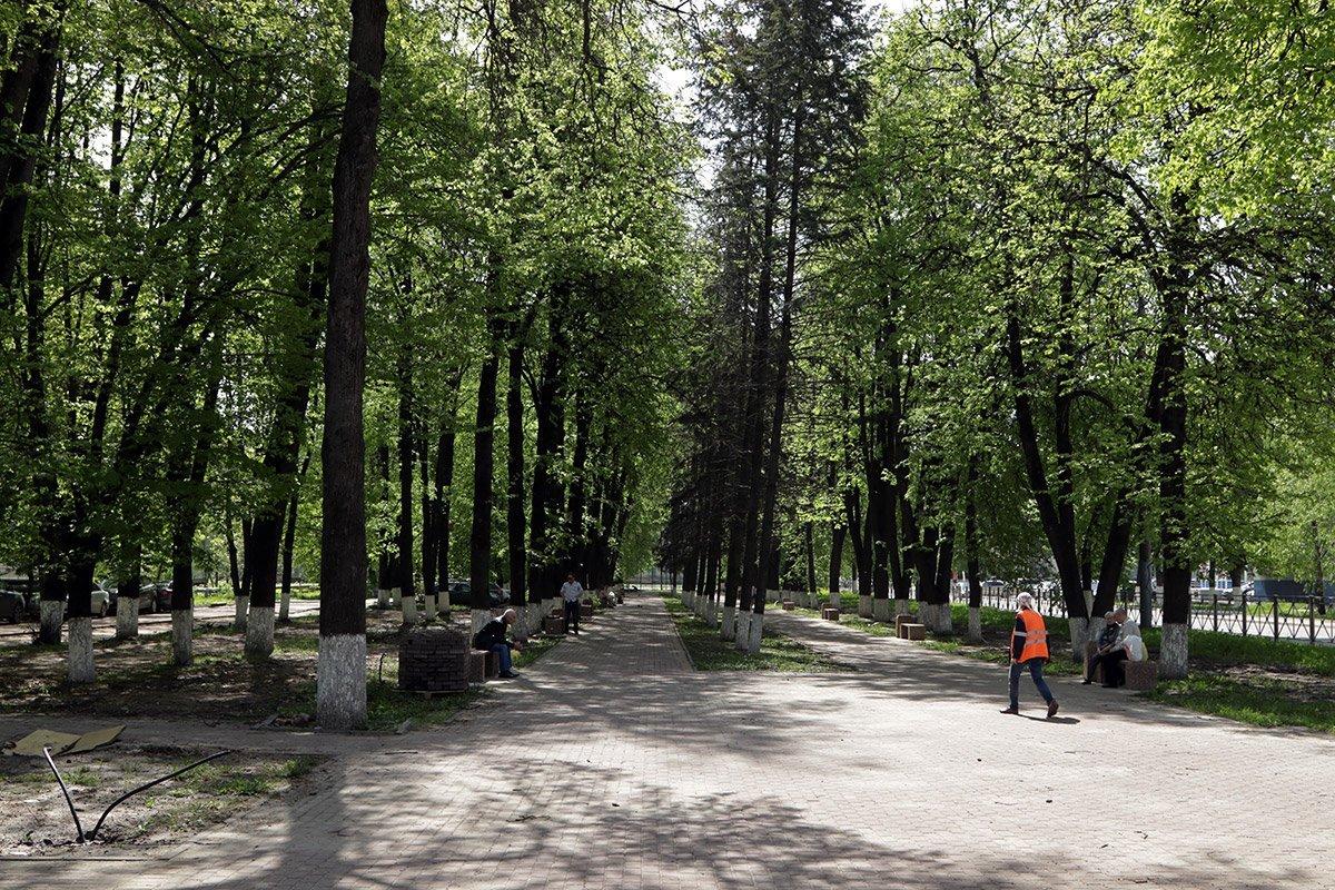 В Брянске новые урны в сквере Энергетиков заполнили доверху мусором