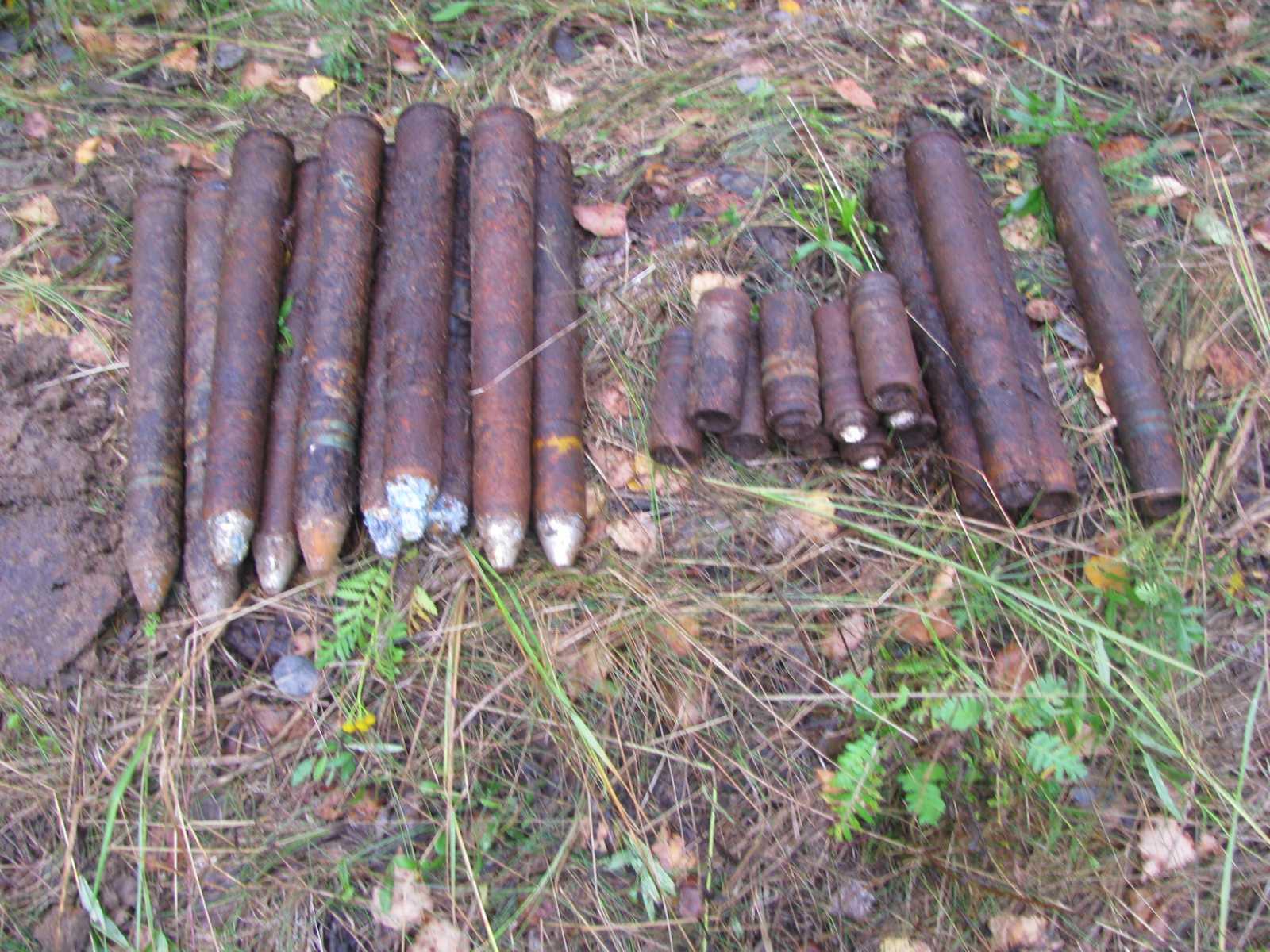 В поле в Жуковском районе нашли 24 артснаряда времен войны