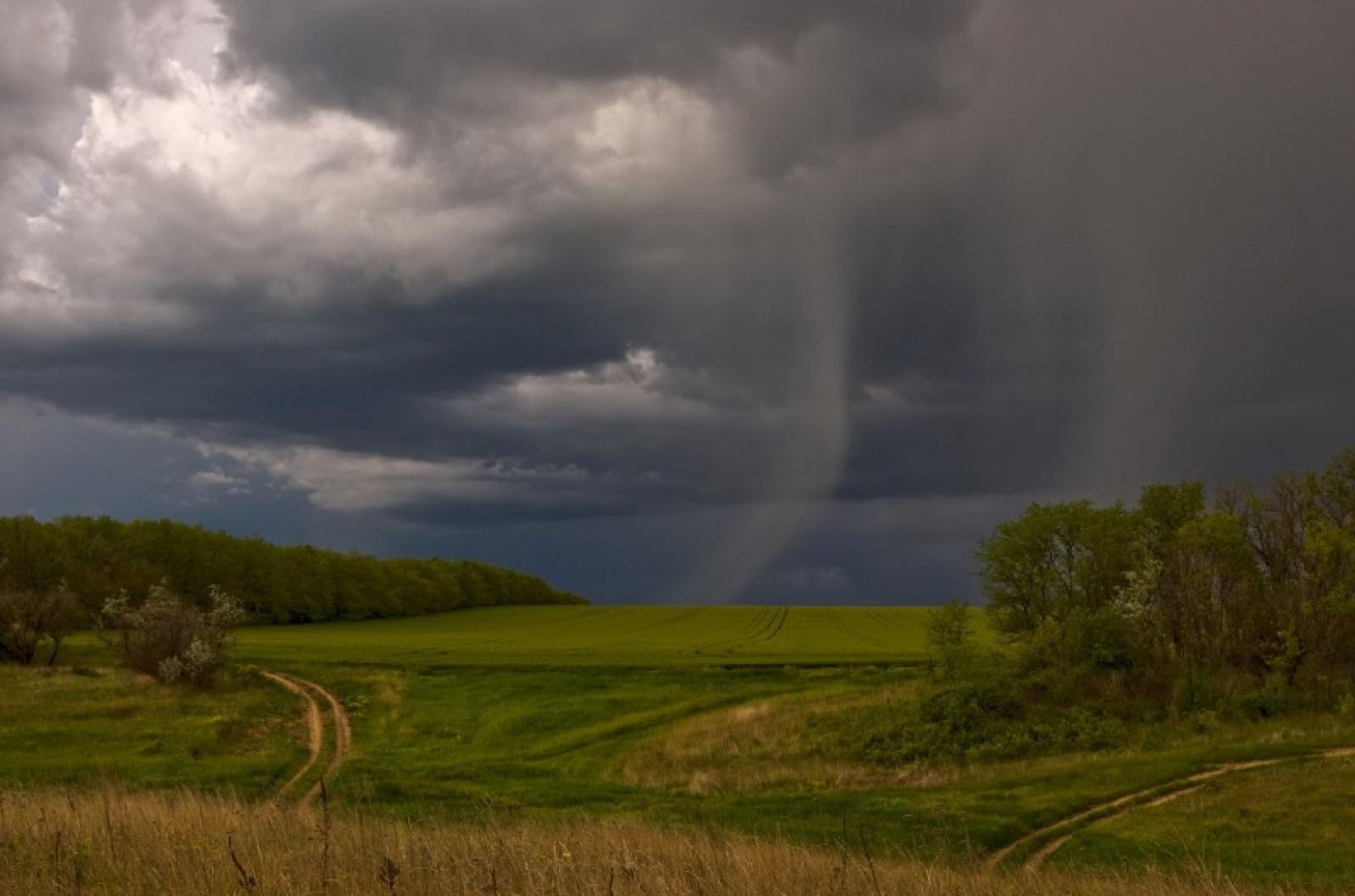В Брянской области 2 сентября прогнозируют 19 градусов тепла и дождь