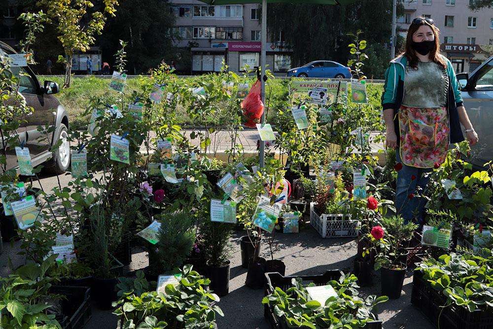 Жители Брянска на ярмарке выходного дня купили более 80 тонн овощей и фруктов
