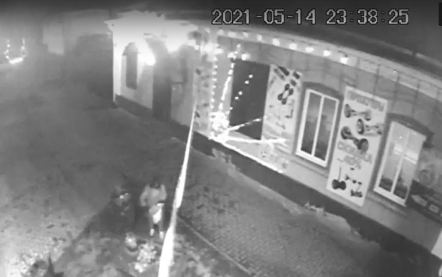 В Новозыбкове местная жительница ночью украла с клумбы петунии