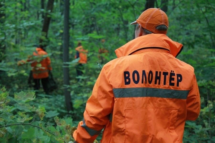 В лесу под Брянском нашли заблудившегося 62-летнего Юрия Краснова