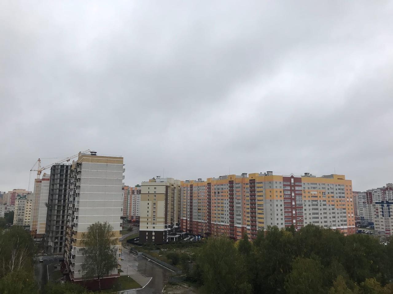 В Брянской области 19 августа прогнозируют 4 градуса тепла и сильный дождь