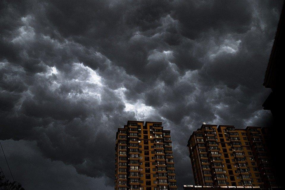 Объявлен жёлтый уровень погодной опасности на территории Брянской области из-за ветра
