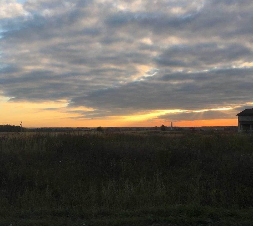 В Брянской области 24 сентября обещают дождь, туман и 2 градуса тепла