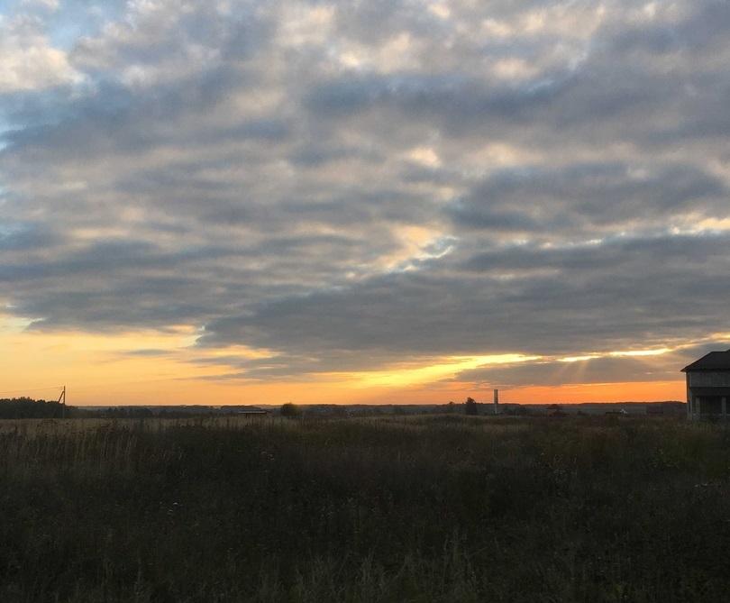 Брянскую область утром 2 октября окутает туман