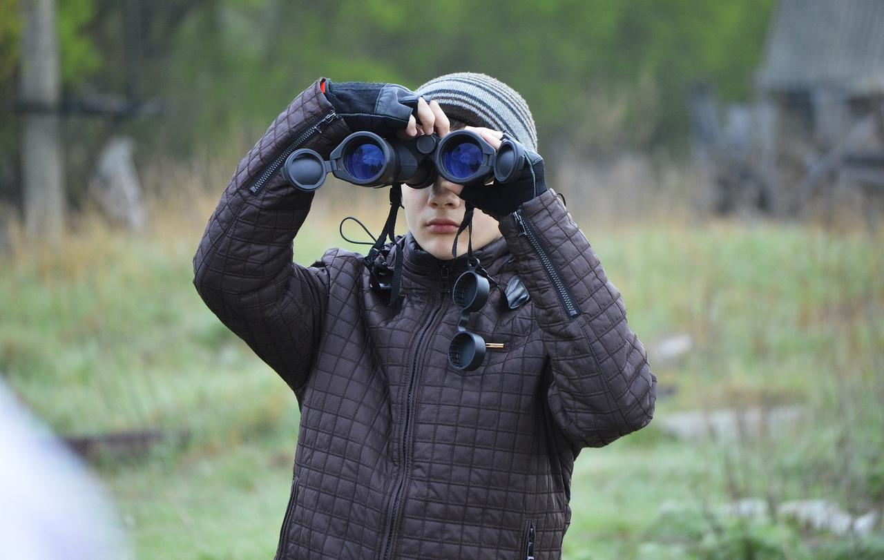 В Брянской области за время Дней наблюдения птиц насчитали 57 видов пернатых