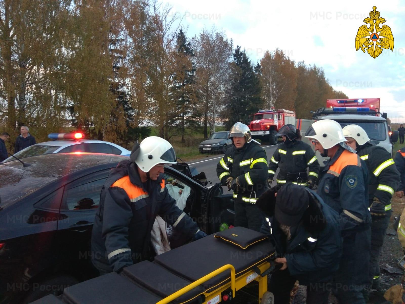На территории Брянской области за минувшие сутки случилось 11 пожаров