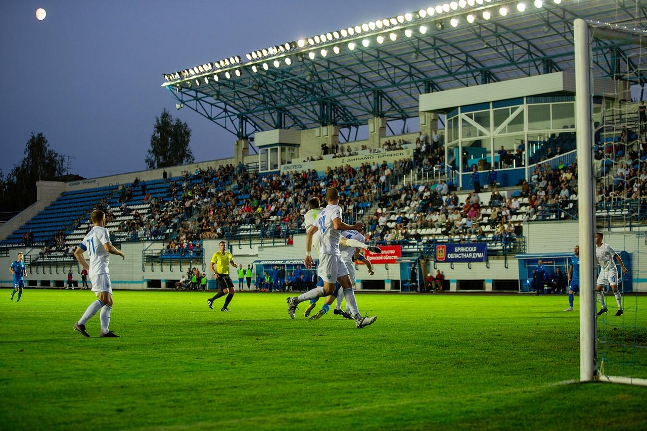 ФНЛ проведет служебную проверку из-за скандала в брянском «Динамо»