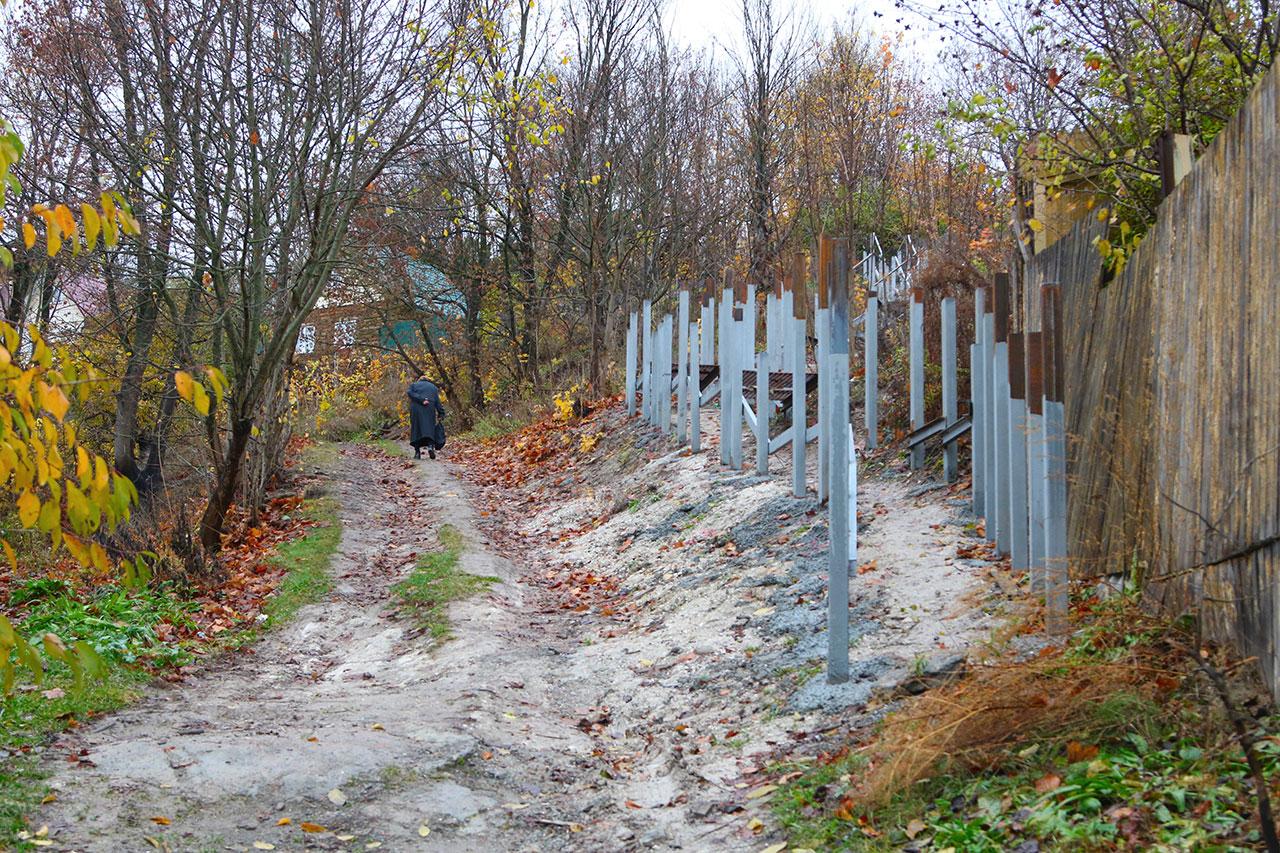 Брянских чиновников наказали за поврежденные деревья при добыче песка