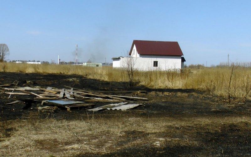 В Брянской области с начала года изъяли 1,6 тысячи га заросших бурьяном земель