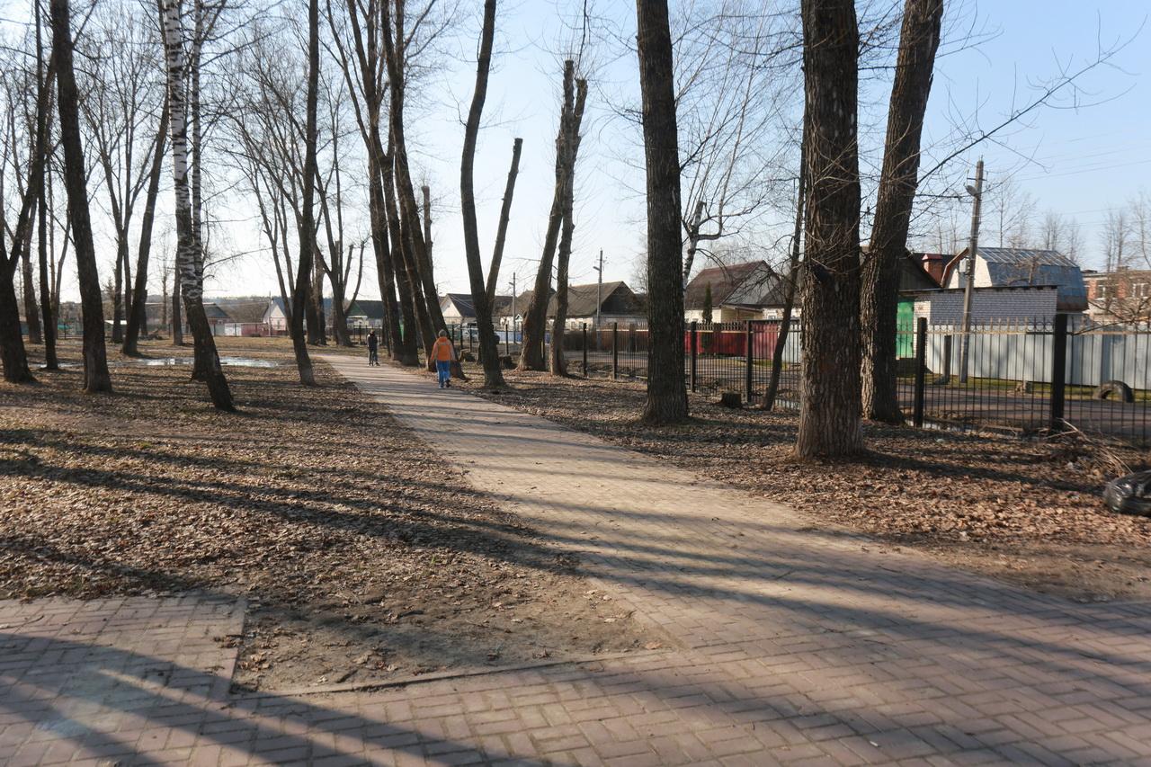 Брянский парк Металлургов включили в список голосования по благоустройству