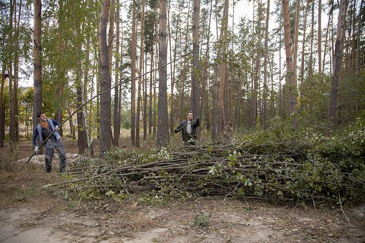 Заповедник «Брянский лес» пригласил добровольцев на уборку центральной усадьбы