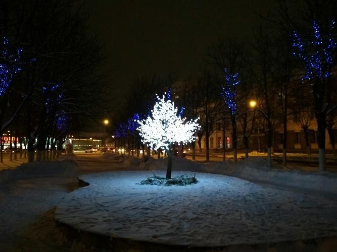 В Фокинском районе Брянска появились волшебный фонарь и изящная сакура