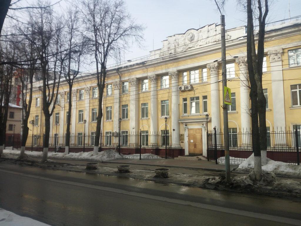В Брянске при расширении улицы Горького удалят только 9 аварийных деревьев