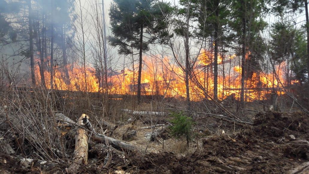 В Брянской области произошло 17 пожаров за минувшие сутки