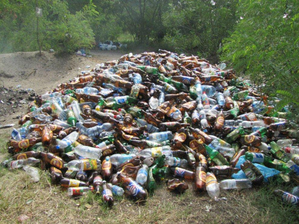 Появилась гора мусора в Майском парке Брянска