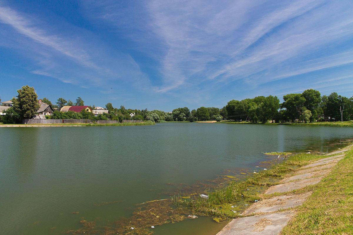 Жителям города Новозыбкова запретили купаться в озере Карна
