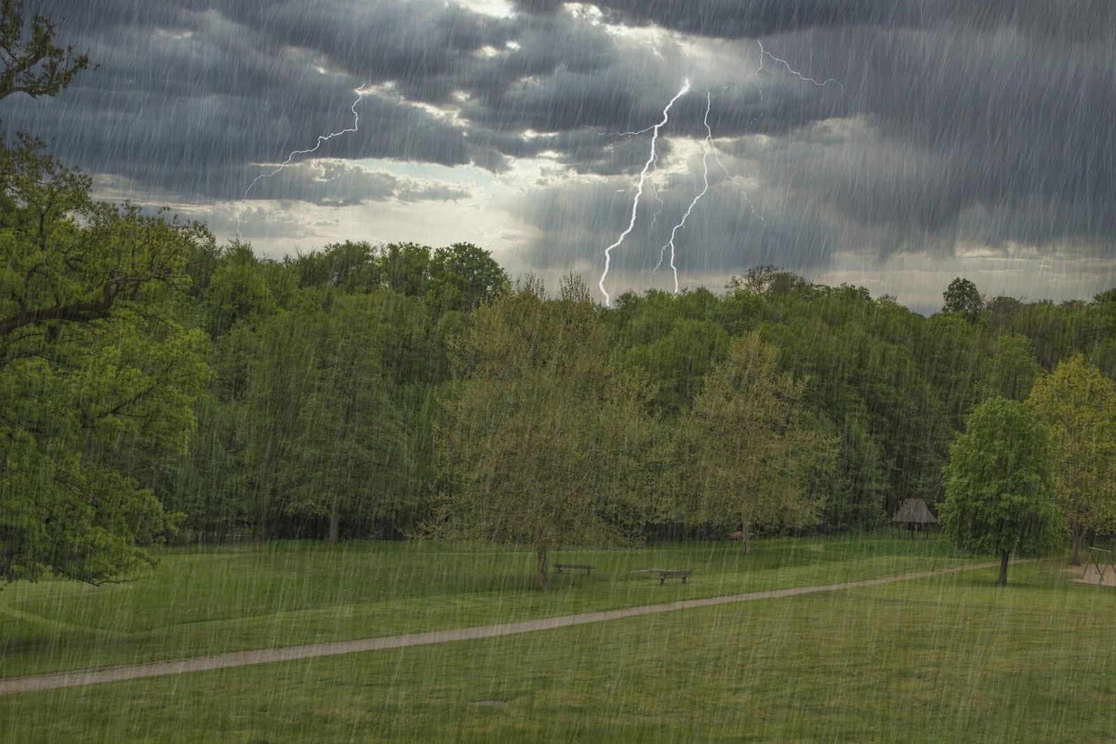 МЧС предупредило брянцев о грозе с дождем и ураганном ветре во вторник