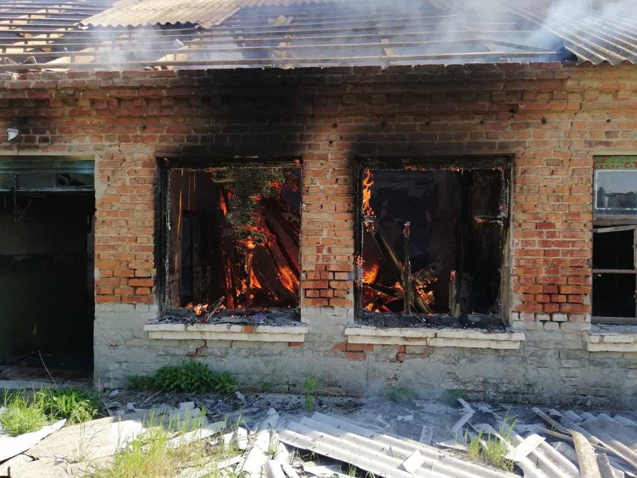 На территории Брянской области за минувшие сутки случилось 36 пожаров