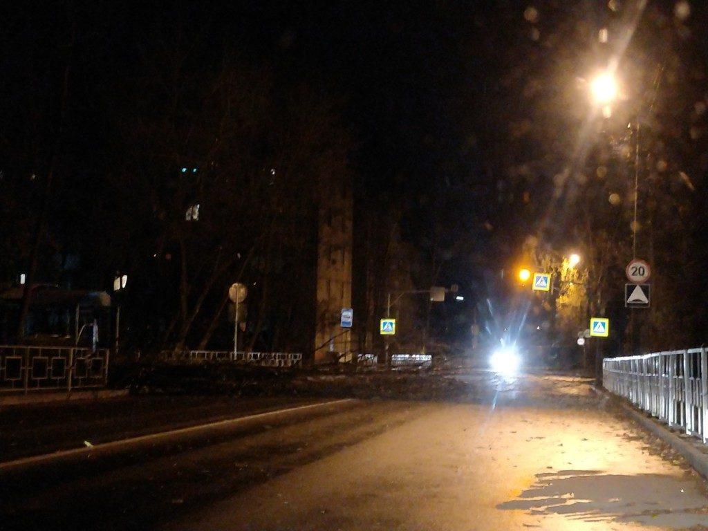 В Брянске на улице Калинина на дорогу упало дерево