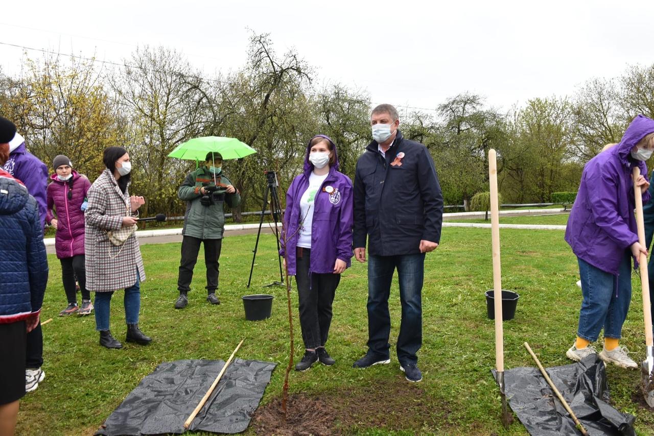 Губернатор Александр Богомаз посадил яблони в рамках акции «Сад памяти»
