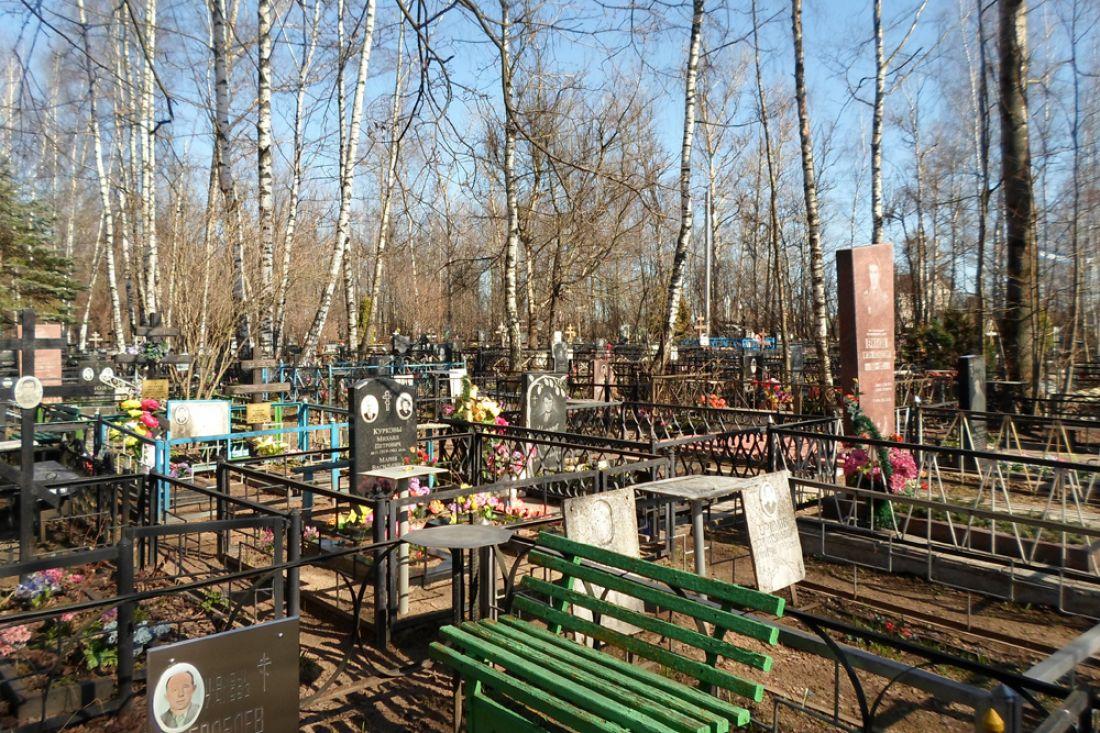 В Белых Берегах планируют расширить старое кладбище на 4,2 га