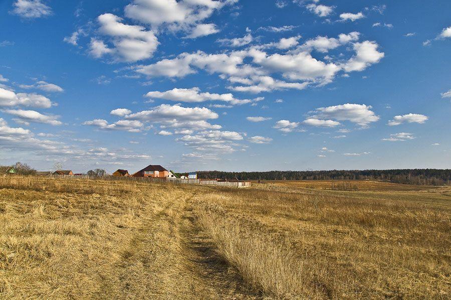В Брянской области возвращают в сельскохозяйственный оборот заброшенные земли