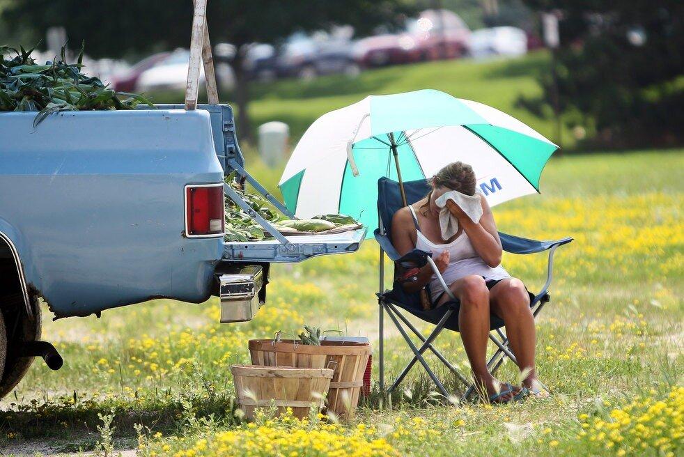В Брянскую область 21 июня придет аномальная жара