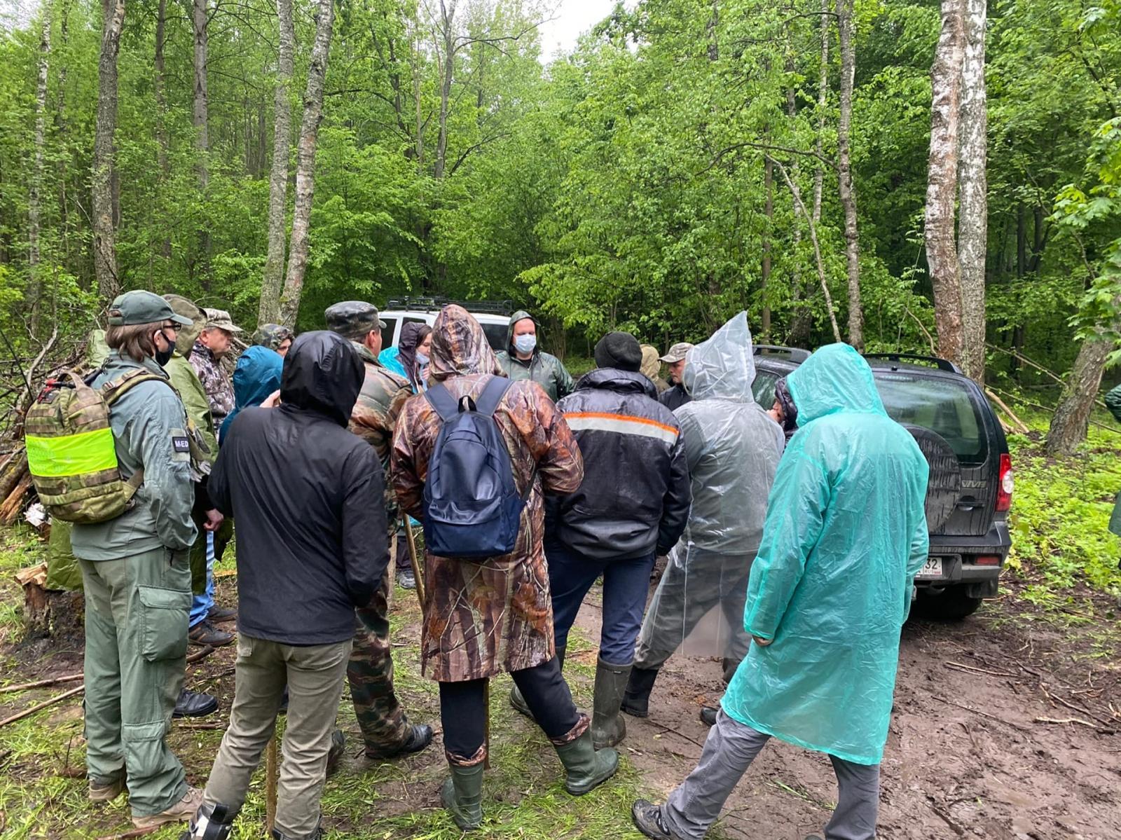 В Трубчевске Брянской области идут поиски потерявшейся в лесу 78-летней Антонины Новиковой