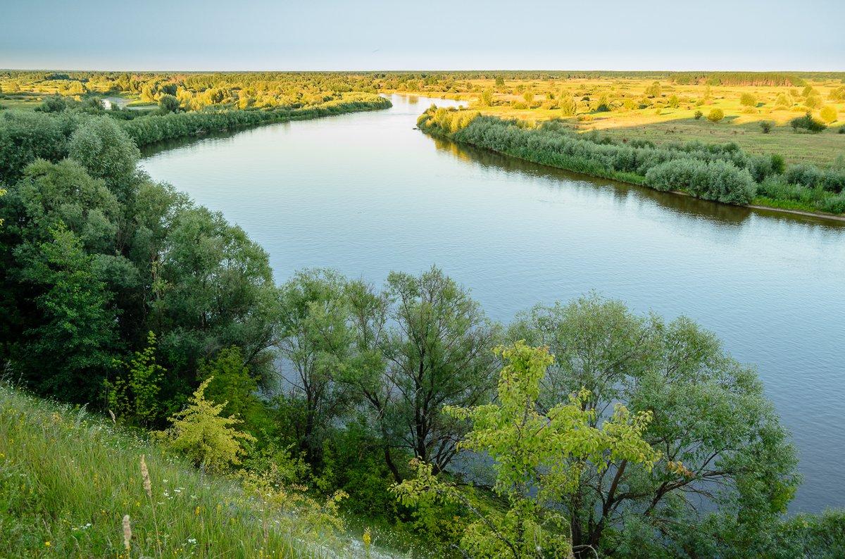 В Брянской области реку Десну вернут в исконное русло