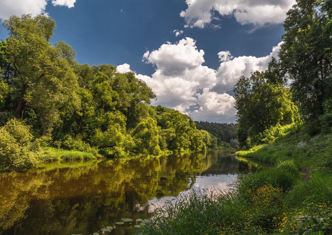 Брянскую реку Десну вернут в исконное русло и очистят от мусора