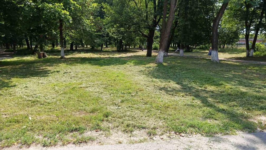 В Бежицком районе Брянска Пионерский парк освобождают от зарослей травы