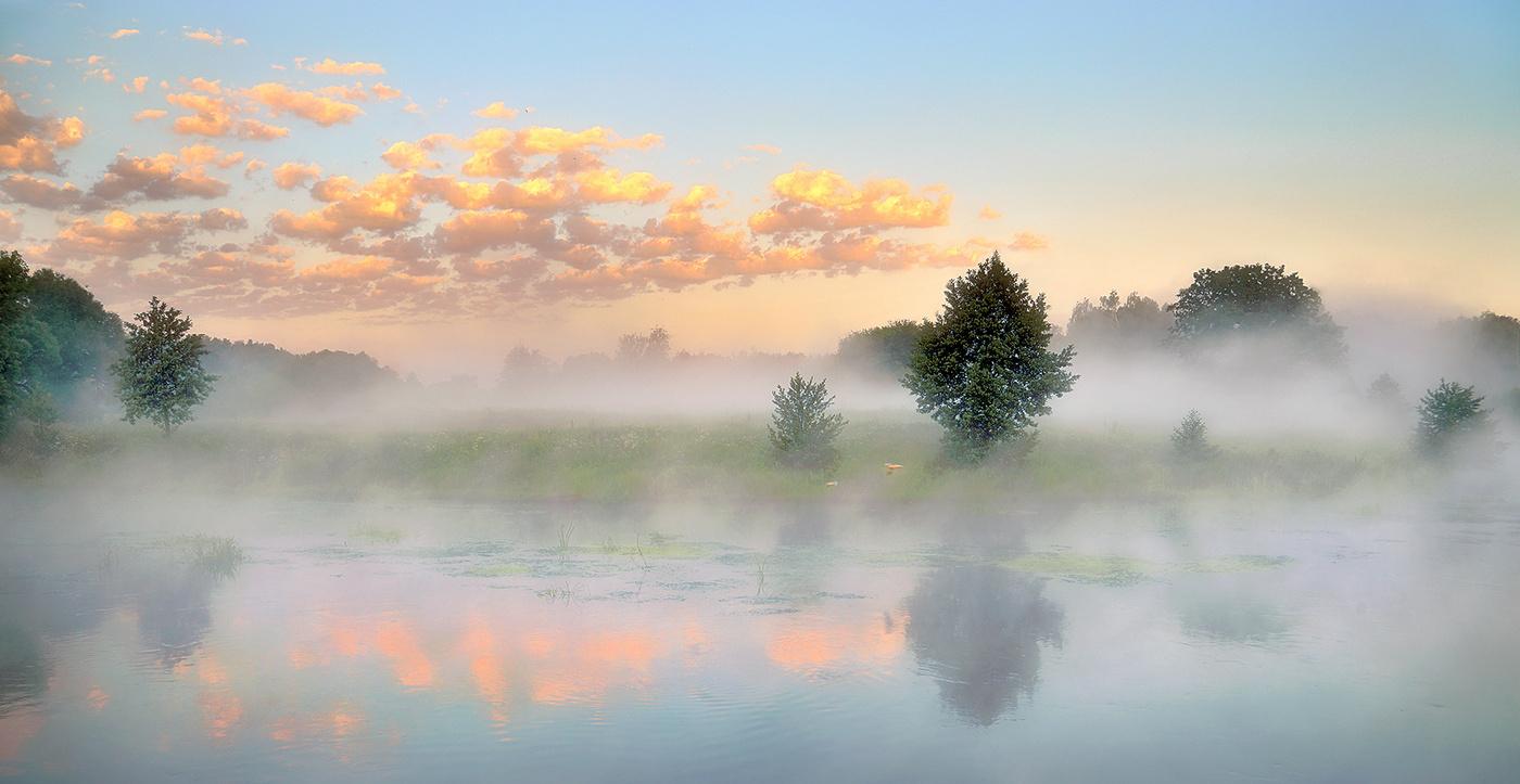 В субботу в Брянской области обещают туман и +32 градуса