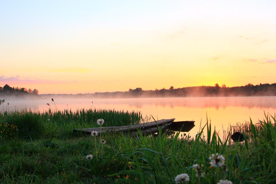 Жителей брянского поселка Локоть попросили не захламлять берег озера Октябрьского