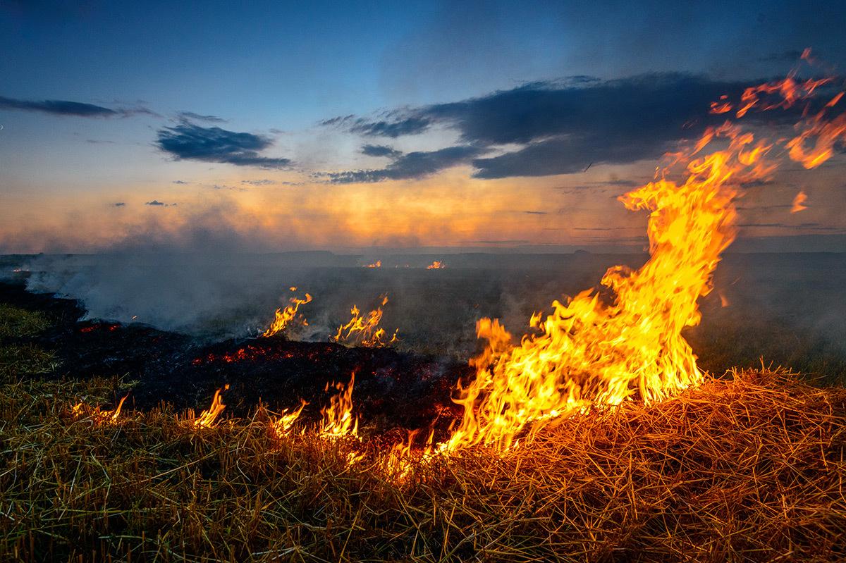 За минувшие сутки в Брянской области произошло 12 пожаров