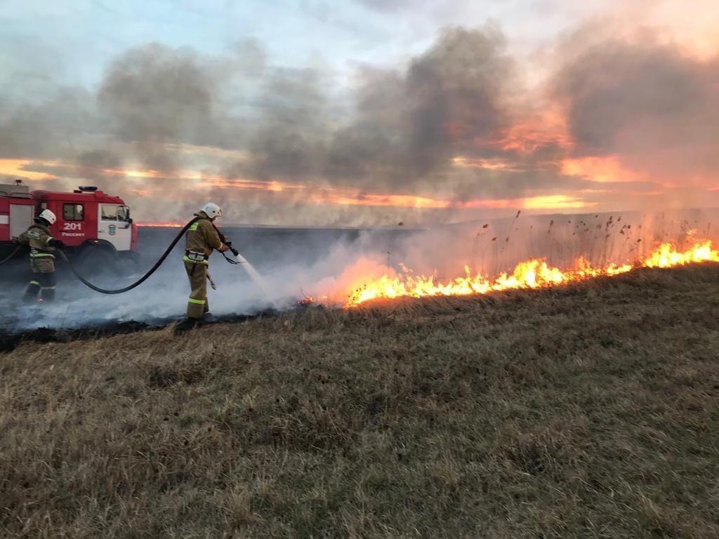 В Клинцовском районе Брянской области ликвидирован лесной пожар