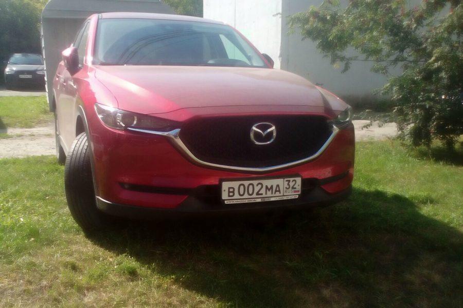 В Брянске автохам на красной «Mazda» облюбовал газон