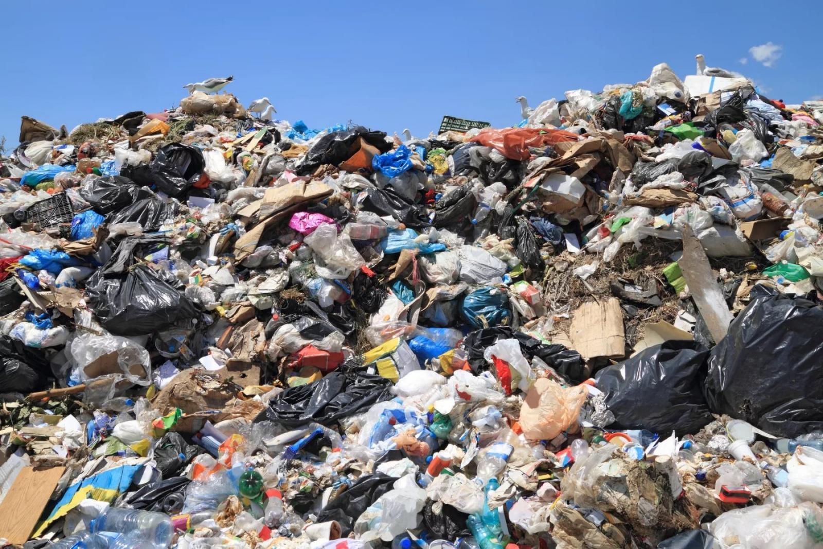 Росприроднадзор предложил повысить штрафы за экологические нарушения