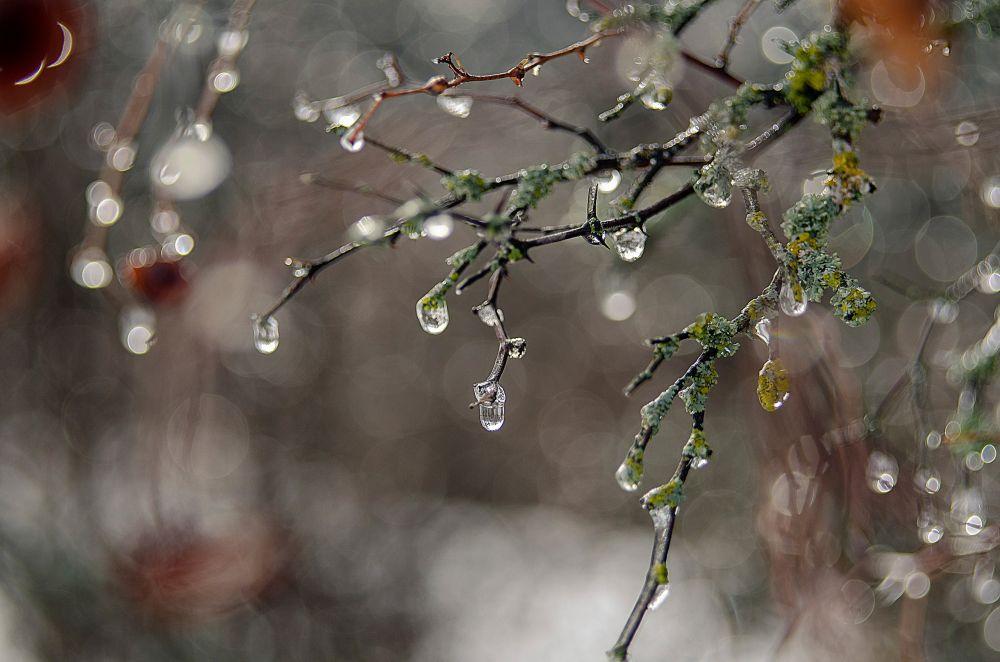 В Брянске прогнозируют теплую неделю с дождями и снегом