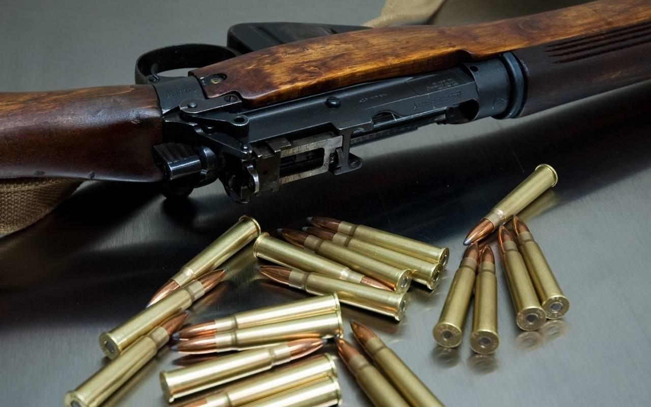 За два дня у брянцев изъяли 39 единиц огнестрельного оружия