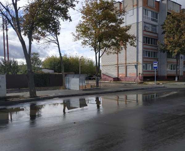 В Брянске из-за мощного ветра рухнула новая остановка