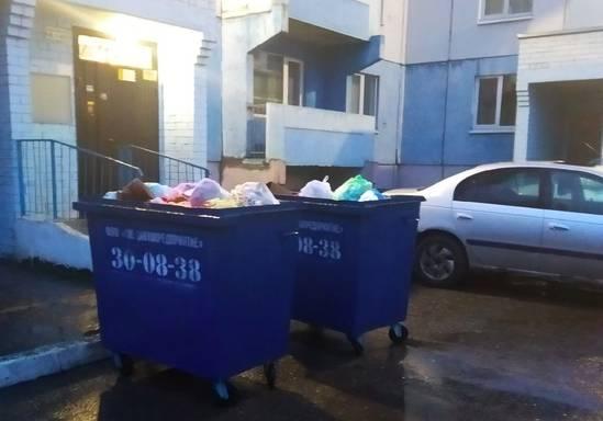 В Брянске жителей переулка Уральского измучила мусорная вонь