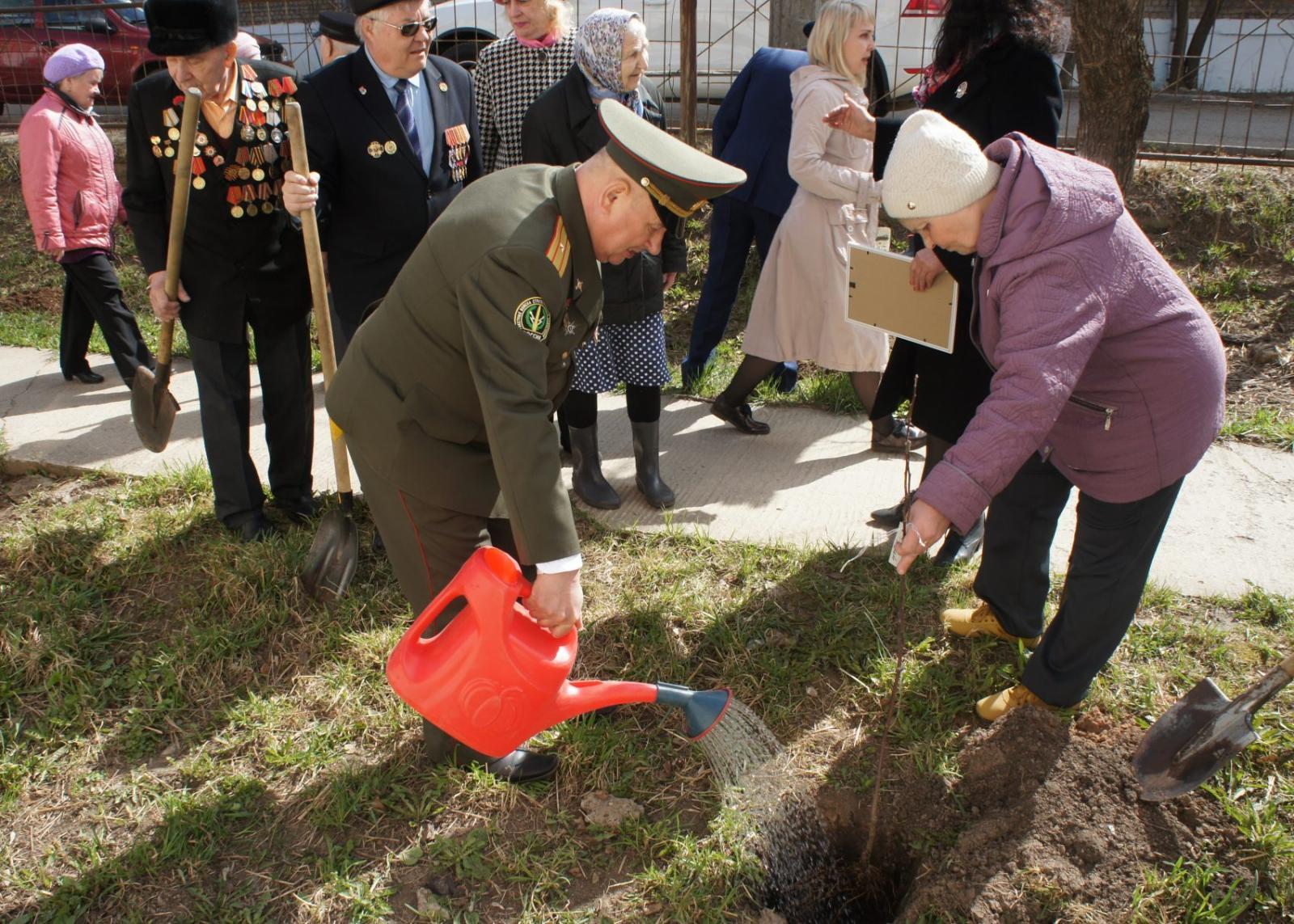 Брянским депутатам за посаженный «Сад Победы» вручили грамоты