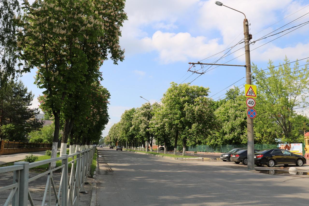 В Володарском районе на улице Димитрова обустроят пешеходную зону