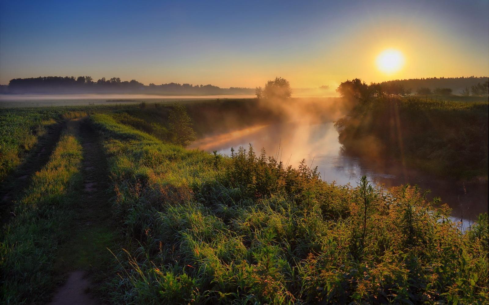В последний день весны в Брянске будет 17 градусов тепла