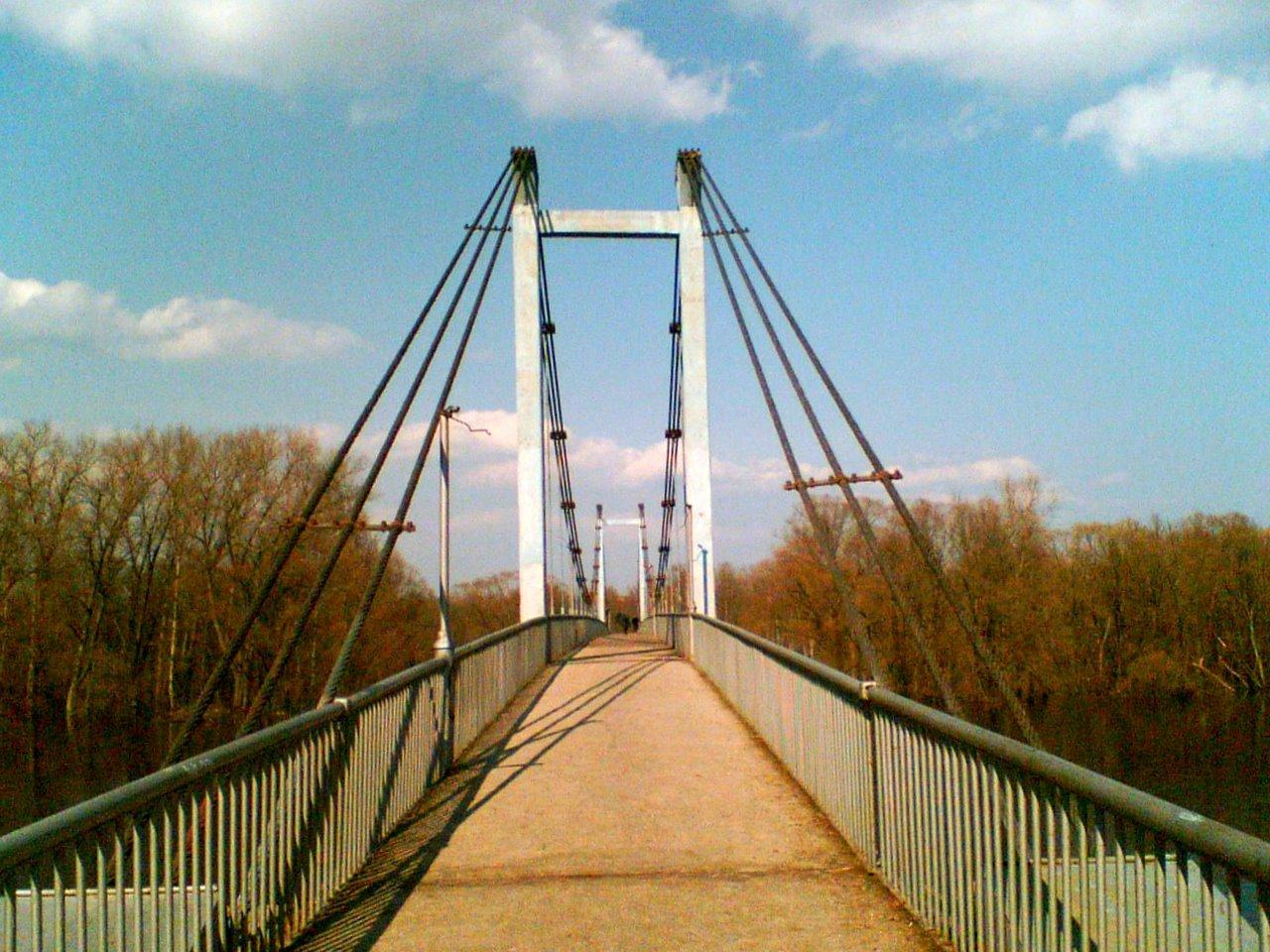 Волонтеры «Единой России» начали покраску Голубого моста в Брянске